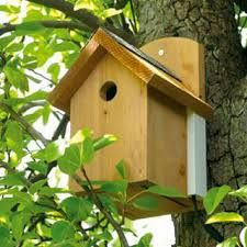 nesting boxes - Google Search