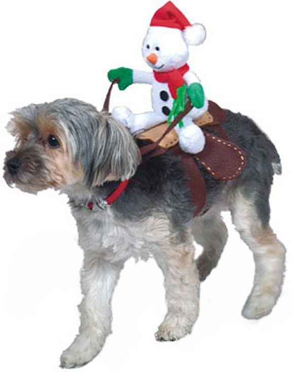 Christmas Snowman Rider Dog Costume