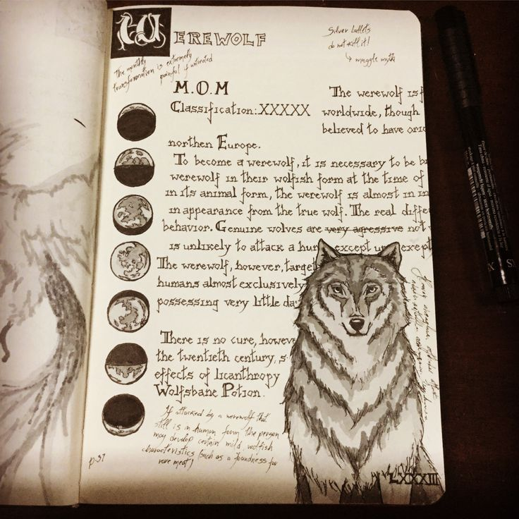 Fantastic Beasts Guide 3: The Werewolf This is a project that began during Inktober and is currently in progress
