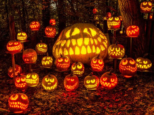 halloween usa parma ohio