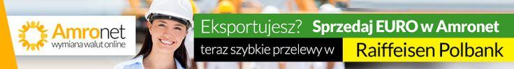 """Amronet.pl IV. cd.  Amronet.pl również dla firm, eksporterów i importerów towarów.  Wiemy również jak cenny jest Państwa czas, bo przecież """"czas to pieniądz"""".  Także obawy o bezpieczeństwo transakcji są dla nas w pełni zrozumiałe, zwłaszcza, iż wielokrotnie przewalutować trzeba dużą kwotę. www.amronet.pl"""