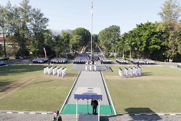 forces flag raisers