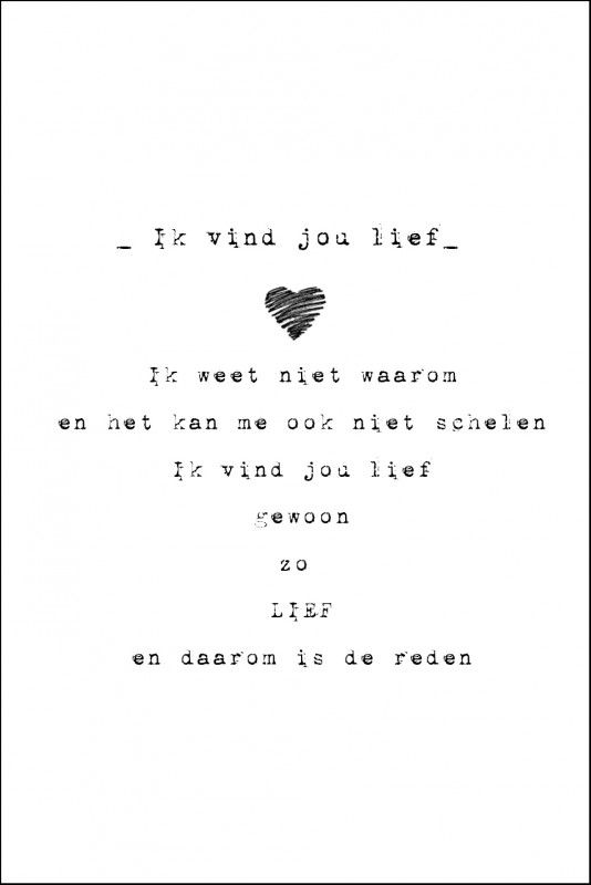 "(Dutch) I think this translates to: _I Think You're Sweet_ ""I do not know why, and I do not care. I think you're sweet, just so sweet, and therefore is the reason."" Not sure what exactly it means, but I like it."