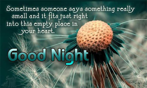 Romantic Good night Quotes and Messages for girlfriend | Quotes of the day