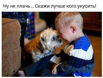 Не плачь! Скажи кого укусить