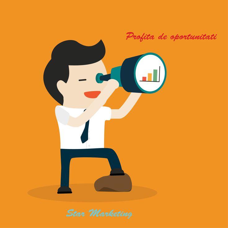 marketing si web design timisoara