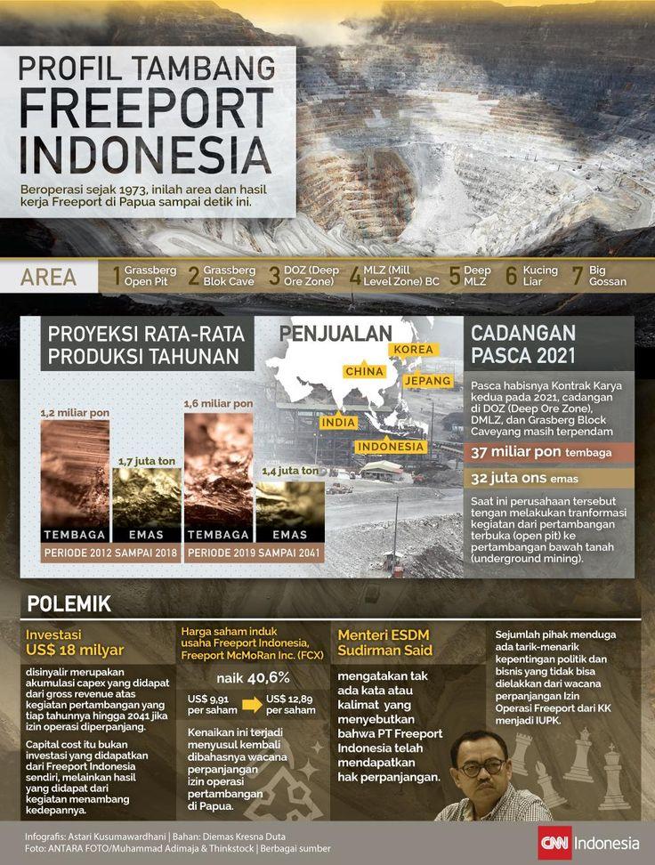 Mengenal Lebih Dekat 'Harta' Indonesia yang Dikeruk Freeport