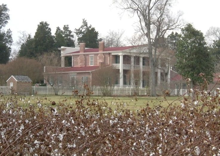 Cotton Plantations | cottonshot.JPG | Historic homes | Pinterest ...