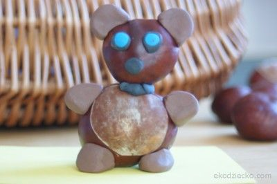 miś z kasztanów i plasteliny bear with chestnuts and plasticine