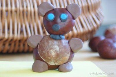 miś z kasztanów i plasteliny bear with chestnuts and plasticine
