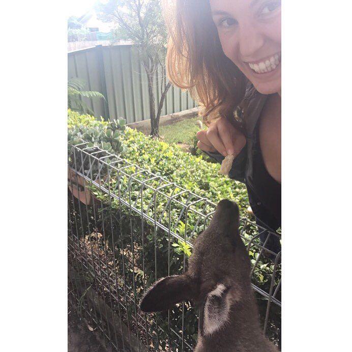 These little guys  #jervisbay #kangaroo #wildlife #australia by heatherpryer http://www.australiaunwrapped.com/ #AustraliaUnwrapped