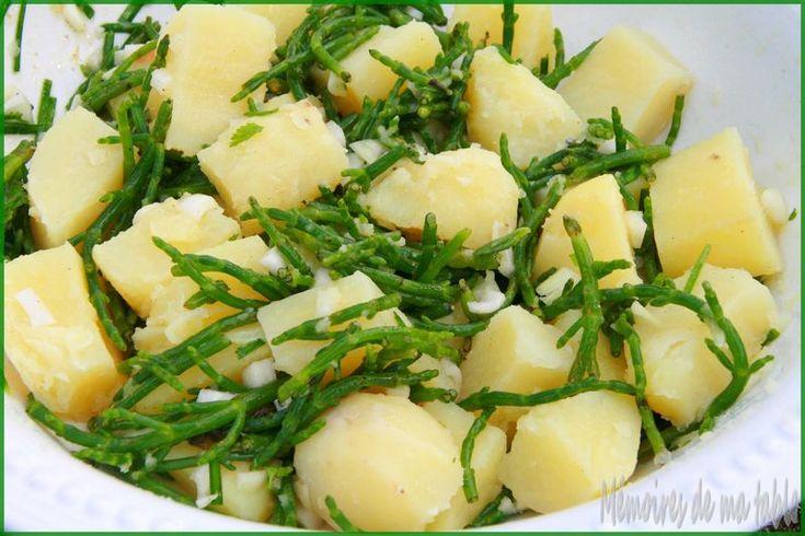 Salicorne en salade aux pommes de terre