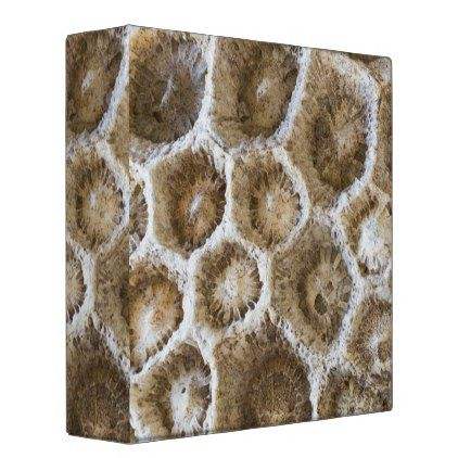 Fossilized Coral Closeup Photo 3 Ring Binder - photos gifts image diy customize gift idea