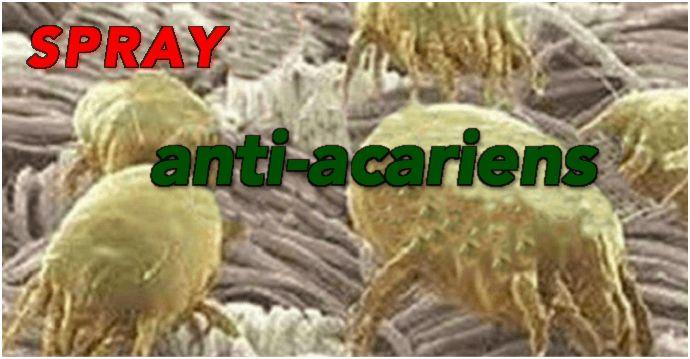 Un spray naturel contre les acariens.  Une bouteille à spray Une demie tasse d'alcool Une demie tasse d'eau déminéralisée (distillée) 30 gouttes d'huiles essentielles (citron, eucalyptus, lavande, cyprès, cannelle etc.)