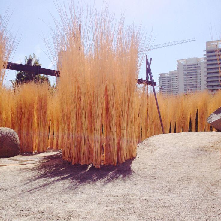 Bosque de Mimbre. YAP Constructo 2015. Parque araucano #grupotalca