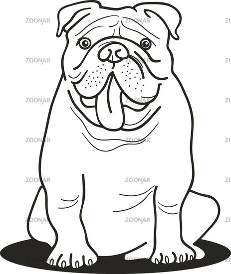 bulldog coloring pages | bulldog for coloring book | Embroidery ...