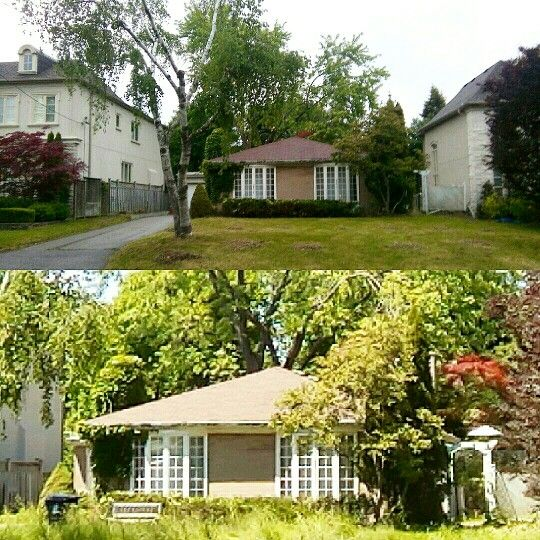 We can transform  your property and increase the value with a little tender love and Tree care call now 647-545-8733