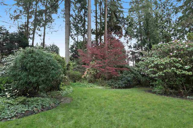 How about this for a park-like back yard?  3172 MT SEYMOUR Parkway in North Vancouver: Northlands House for sale : MLS(r) # R2161512