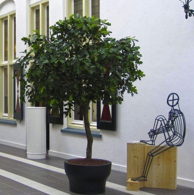 Bomen voor binnen en buiten. www.netiets-anders.nl