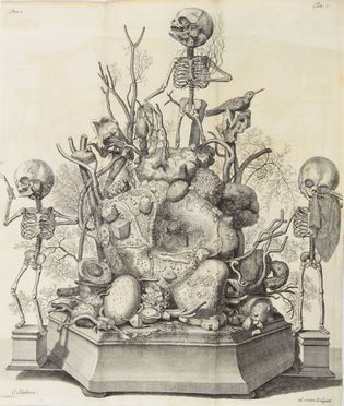 Ruysch Frederik : Thesaurus anatomicus primus. Cum figuris aeneis. (-sextus).  Cornelius Huyberts  - Asta Manoscritti, Incunaboli, Autografi e Libri a stampa - Libreria Antiquaria Gonnelli - Casa d'Aste - Gonnelli Casa d'Aste