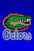 The Florida Gators have great colors!