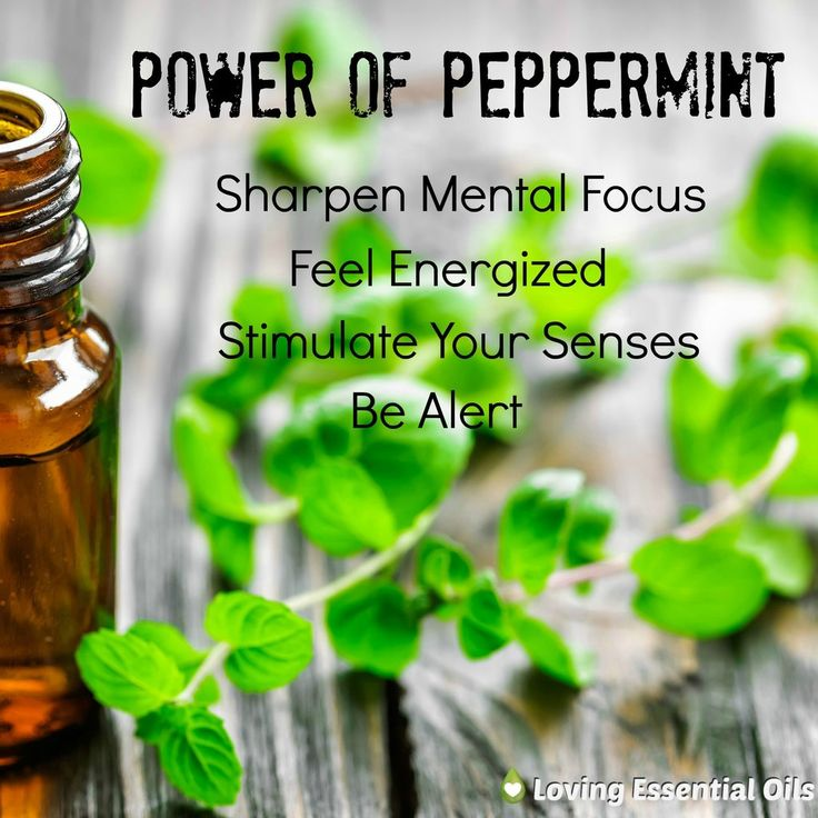 There are many peppermint essential oil uses. Peppermint can be used to invigorate the senses, ease breathing, for stomach problems, and so much more. Peppermint is my second favorite essential oil, just behind lavender essential oil-my first love. I use both everyday and would not want to be without either of them.