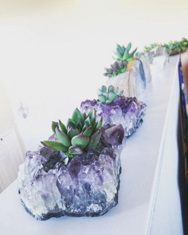 23 Beautiful DIY Succulents Plants And Crystal Garden