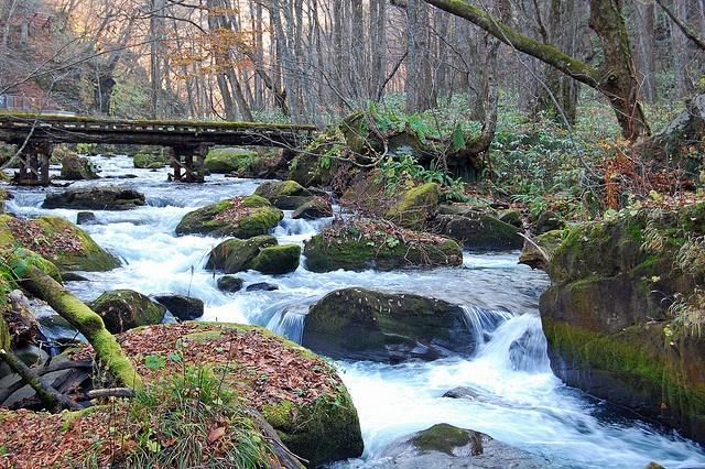 Oirase Stream, near Lake Towada, Japan Lots of great memories!