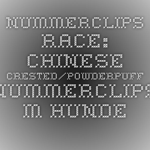 Nummerclips Race: Chinese Crested/Powderpuff - Nummerclips m. hunderacer til små hunde | Cotonshoppen.dk