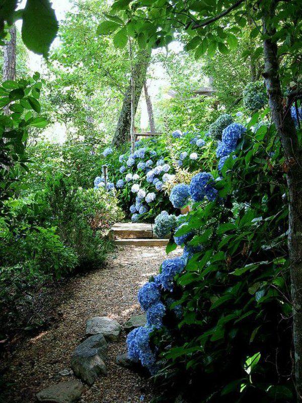 le plus beau jardin avec fleurs bleus, prix du gravier, galet