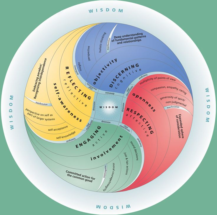 Wisdom Institute, Carrie Bassett, practical wisdom, wisdom, organizations, communities