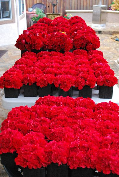 Best red rose centerpieces ideas on pinterest
