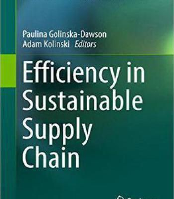 Efficiency In Sustainable Supply Chain PDF