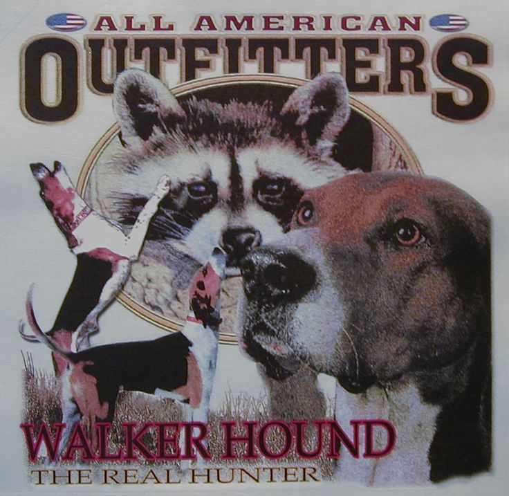 WALKER HOUND THE REAL HUNTER