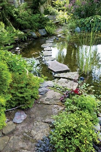 Stepping stones across a pond