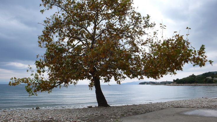 another beach in Kala Nera
