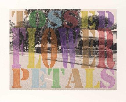 "SPIRIT LANDSCAPES. Tracey Moffatt. Suburban Landscape No. 1. ""Tossed Flower Petals"""