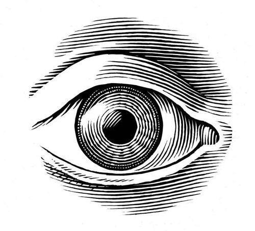 Contour Line Drawing Eye : Новости human being pinterest tattoo eye and draw