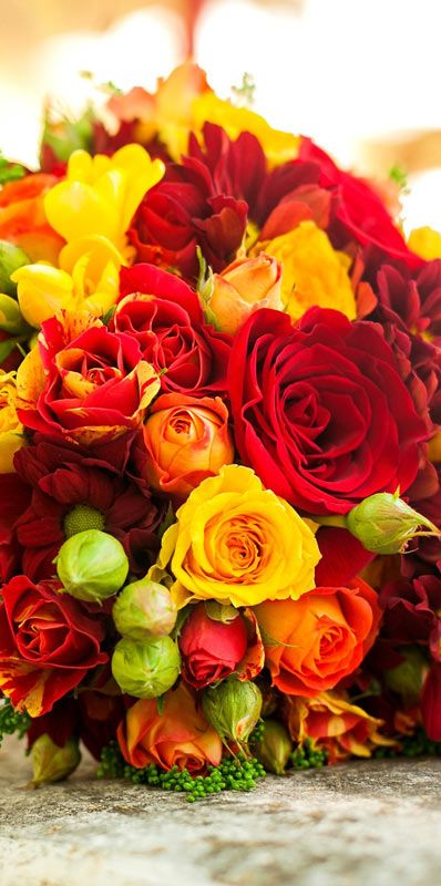 283 best images about beautiful flowers wallpapers - Bouquet of red roses hd images ...