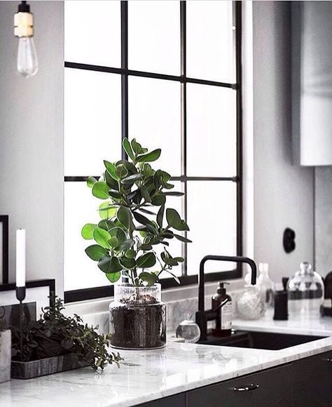 Scandinavian monochrome kitchen By now you probably know that Im a total sucker for industrial windows (see also previous post of a gorgeous bathroom in a former chocolate factory). So it probably wont surprise you that todays post showcases a Scandinavia