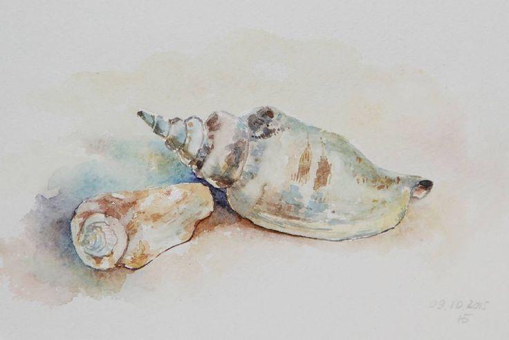 Seashells #watercolor#seashells#summer#sun#colorfull#beach#ocean#water##sand#ракушки#акварель#море# солнце#лето