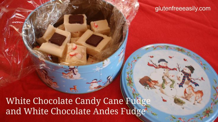 White Chocolate Candy Cane Fudge (or Andes Mint Fudge) {Gluten Free} from Gluten-Free Easily