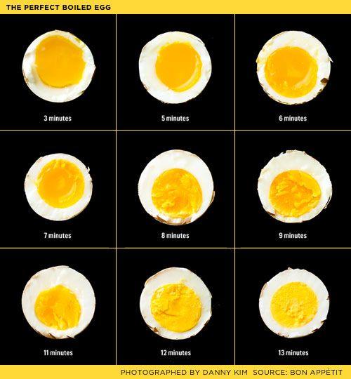 Boiled Egg Chart