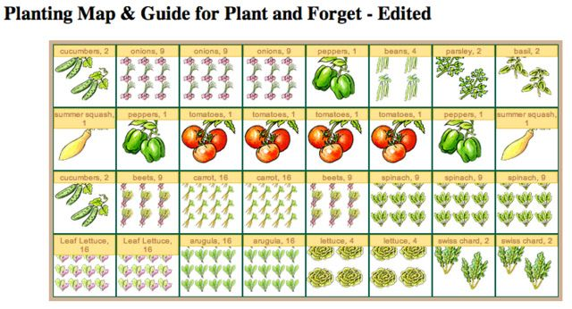 Starting a garden for the home vegetable gardens pinterest gardens house and starting a - Spacing planting vegetables guide ...