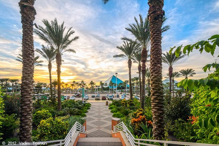 Moody Gardens is one of the most beloved attractions in the entire state of Texas.