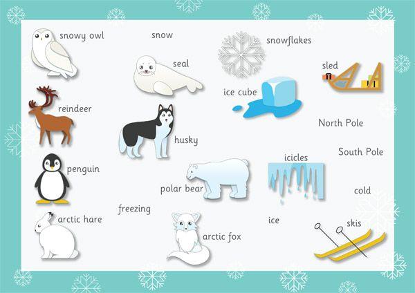 Polar Regions Word Mat Preschool Printables Pinterest