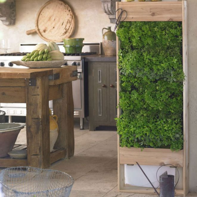 Indoor Herb Wall Planter Part - 47: This Is A Nice Scaled-down Version Of A Garden Wall. Would Look Great