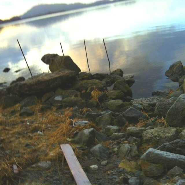 The seaside of our homeplace in Tysvær ❤❤