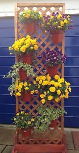 PLANT-POT-HOLDER-RINGS-HANG-6-PLANT-POTS-ON-DIAMOND-LATTICE-TRELLIS-PANELS