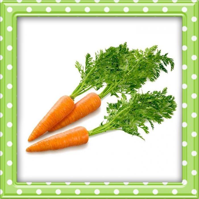 Syksyn satoa: porkkana.